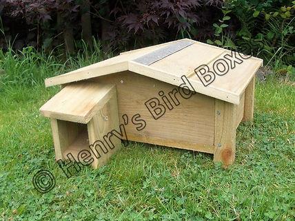 Hedgehog House 2.jpg