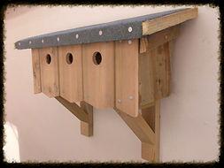 Sparrow Terrace Bird Box - Henry's Bird Boxes