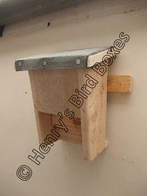 Lodge Bat Box.jpg
