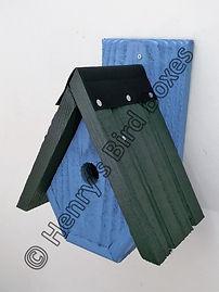 Alpine Bird Box Sky Blue & Green.jpg