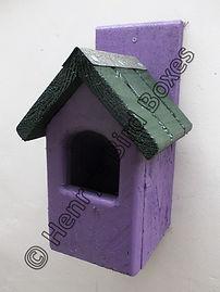 Classic Robin Bird Box Purple & Green.jp
