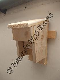 Manor Bat Box.jpg