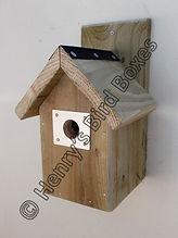 Classic Bird Box with Aluminium Guard.jp