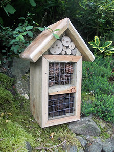 Insect Hotel Pine Cones & Bark Chips
