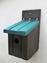 Basic Bird Box Brown & Pine Green