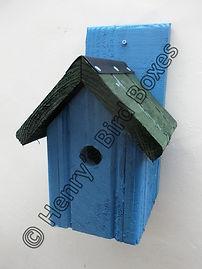 Classic Bird Box Sky Blue & Green.jpg