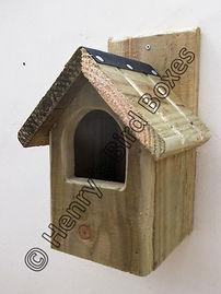 Classic Robin Bird Box Natural Finish.jp