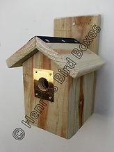 Chalet Bird Box with Brass Guard.jpg