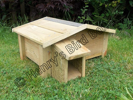 Hedgehog House.jpg