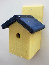 Chalet Bird Box Yellow & Dark Blue.JPG
