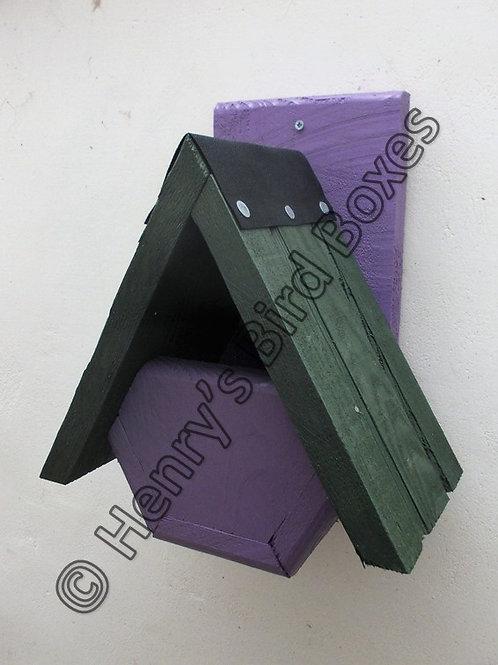 'Alpine Robin' Bird Box - Coloured Version