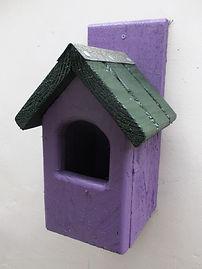 Classic Robin Bird Box Purple & Green
