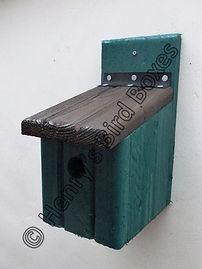 Basic Bird Box Pine Green & Brown.jpg