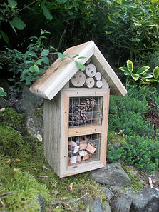 Insect Hotel Pine Cones & Wood Chips