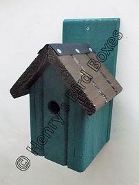 Classic Bird Box Pine Green & Brown.jpg