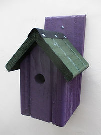 Classic Bird Box Purple & Green