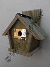 Penthouse Bird Box with Brass Guard.jpg