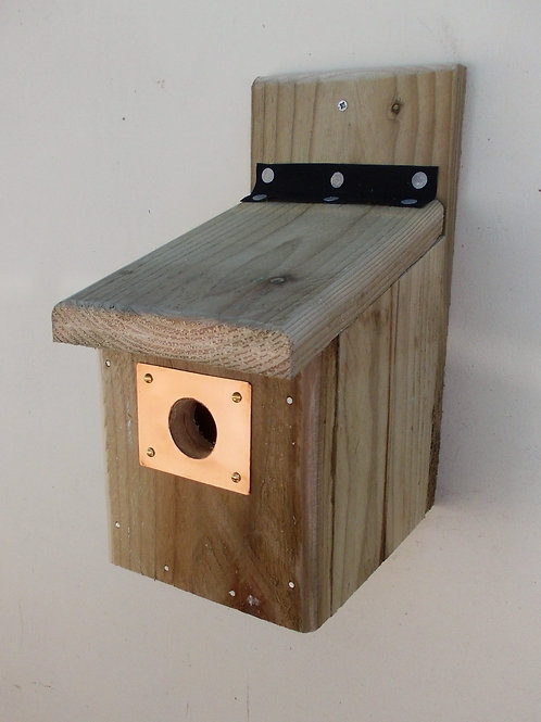 'Copper Entrance Guard' Bird Box - Multiple Designs