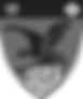 Tatabanya-logo mszurke_edited.png