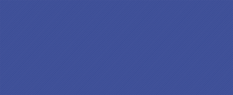 EBB_Flower_Line_Texture_Navy-01.png