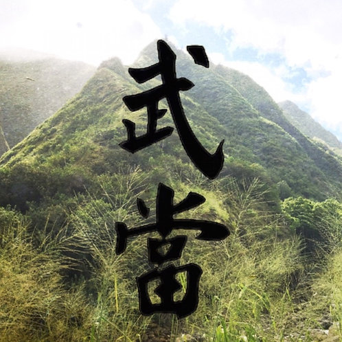 Beginners Taichi Online Classes