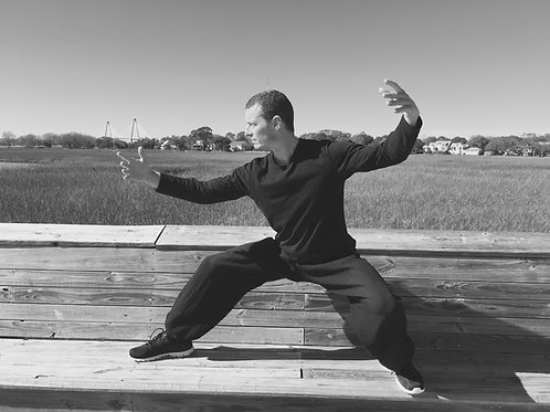 Taichi group class session online