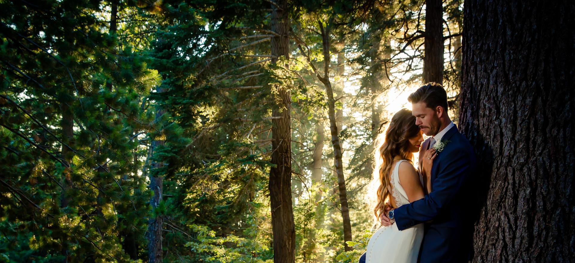 Couple in Forest Zookphoto.jpg