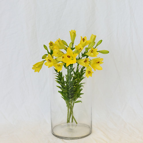 Yellow lily bunch wrapped