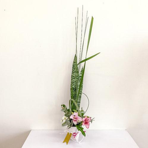 Ikebana Devotion