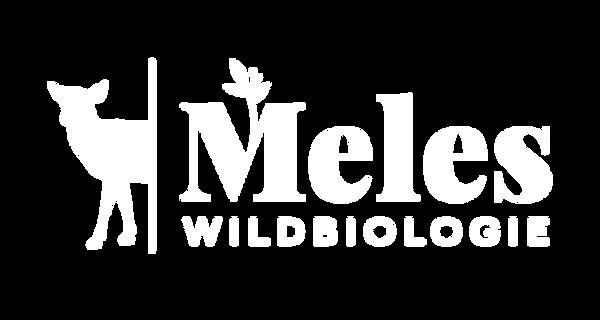Meles Wildbiologie