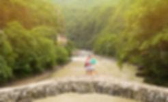 DJI_0353l.jpg