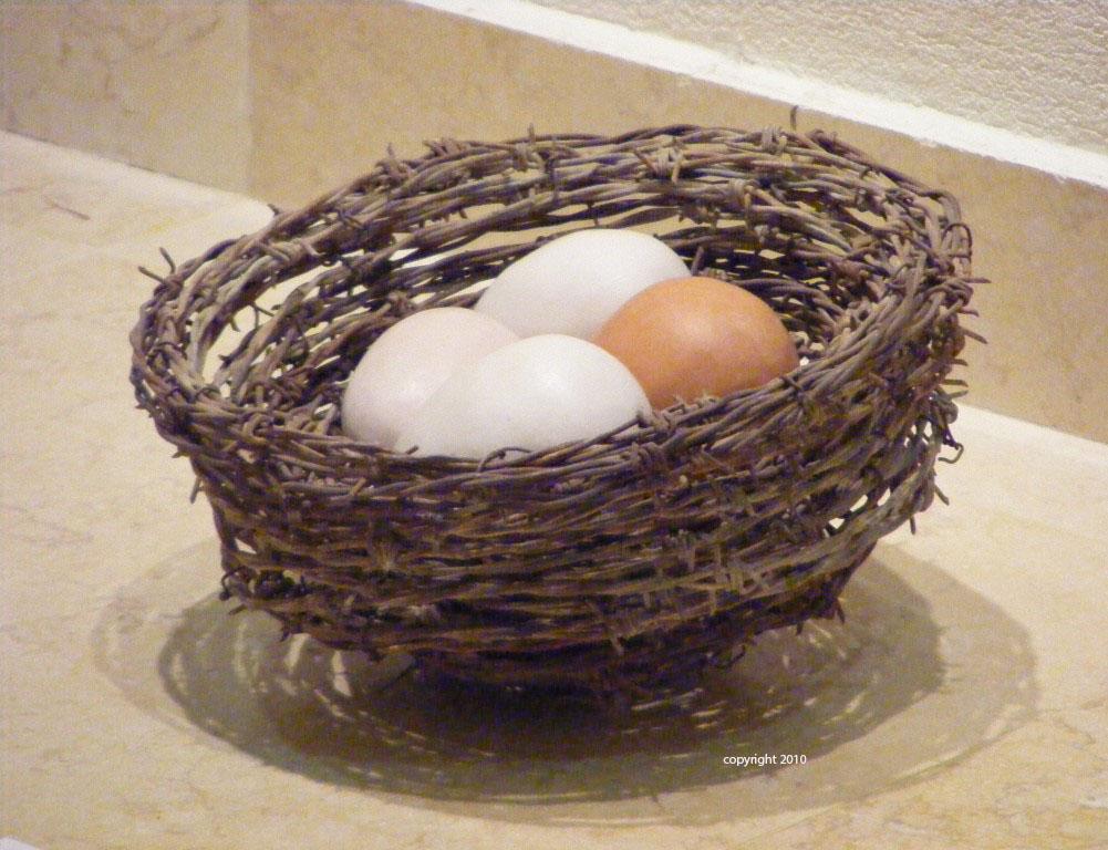 Barbed Nest