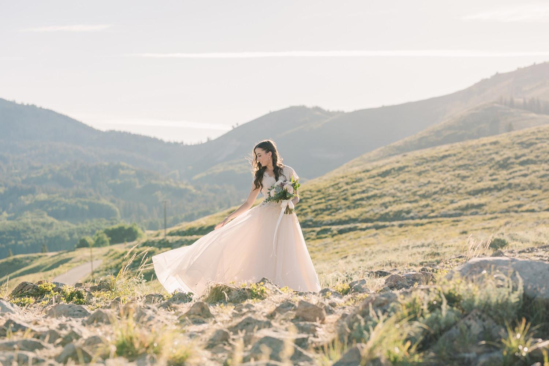 Lindsey Stewart Photography