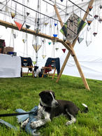 Puppy Chancho at Art Fair