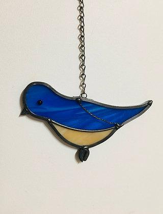 """Bluebird  -""""Bella"""""""