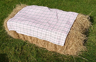 Pink tartan cover