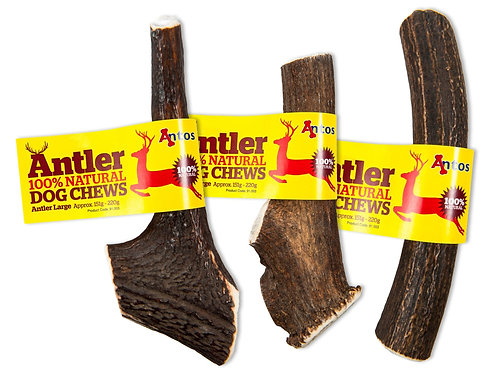 Antos Antler Medium