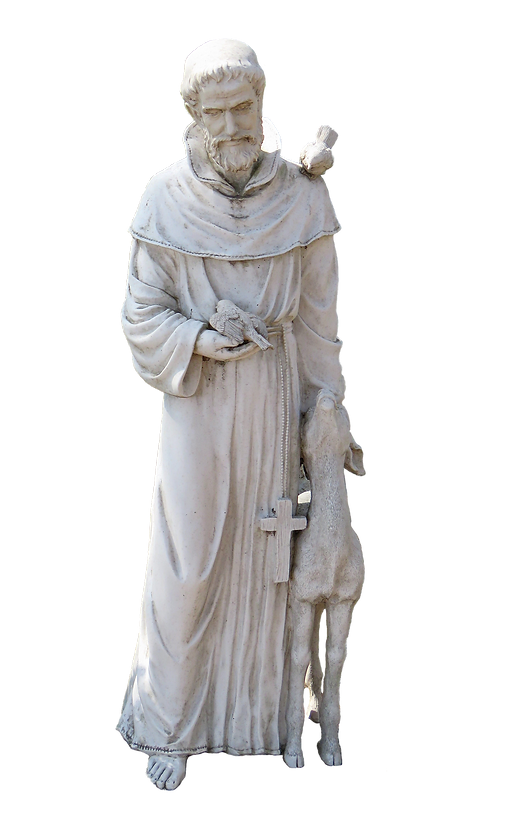 resized st francis.png