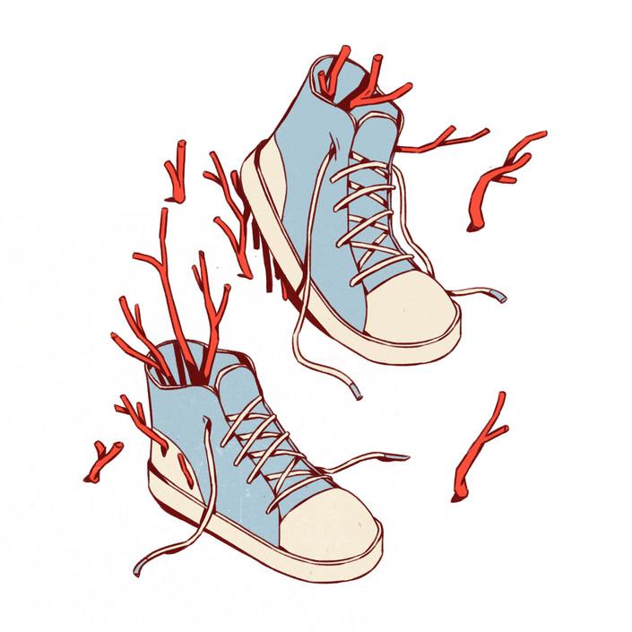 plant shoes.jpg