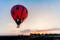 20201107 - Balloons in Gilboa - 071311