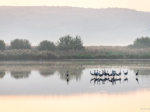 """לצלם בארץ כמו בחו""""ל - לוקיישנים מרשימים לצילום לתפארת מדינת ישראל"""