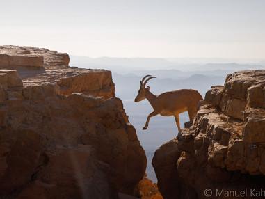 מנואל כהנא - צלם בקהילת פוטו טיפס