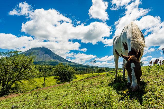 Costa Rica Photo Tour with PhotoTips.co.il