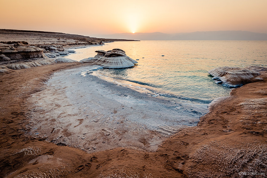 The Dead Sea Mushroom