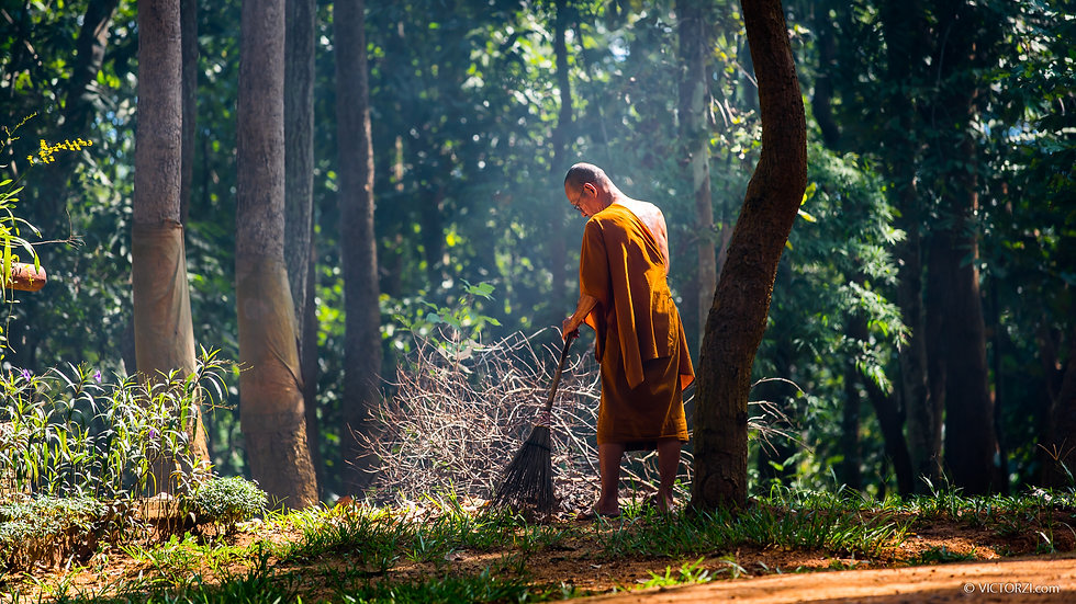 "The Lone Monk - Winner of the ""Amazing Faces of Thailand"" Competition"