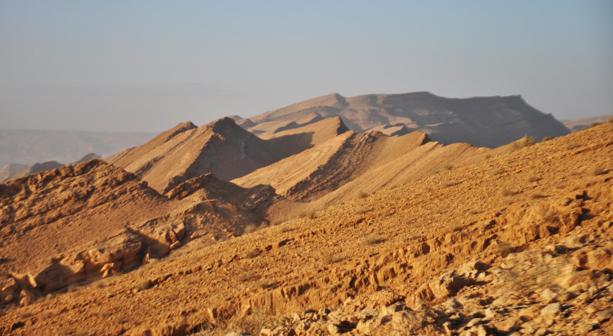 הר כרבולת 2010