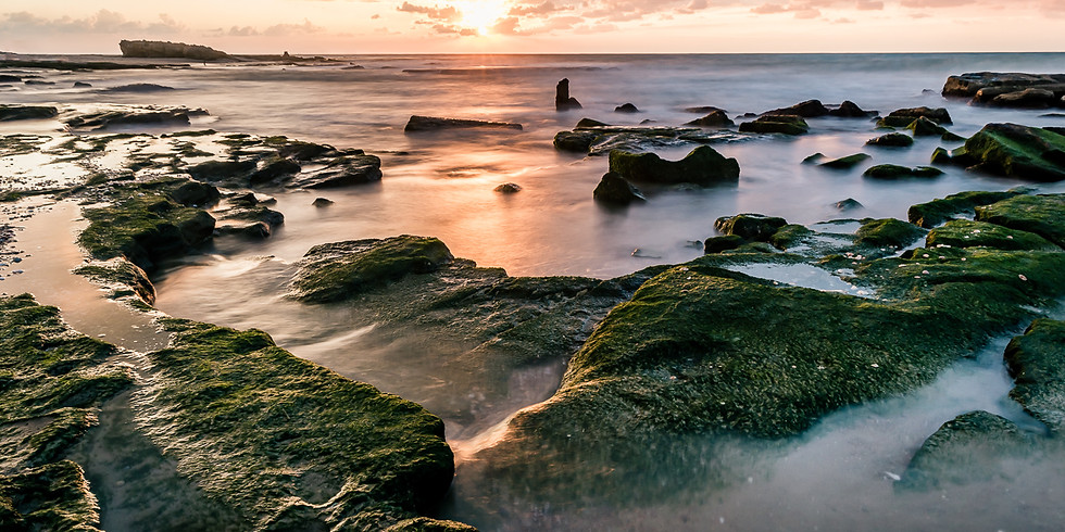(SOLD OUT) סדנת צילום נוף ימי בפלמחים (בהנחיית ויקטור זיסלין)