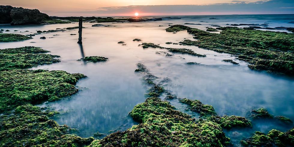 סדנת צילום נוף ושקיעות בחוף פלמחים