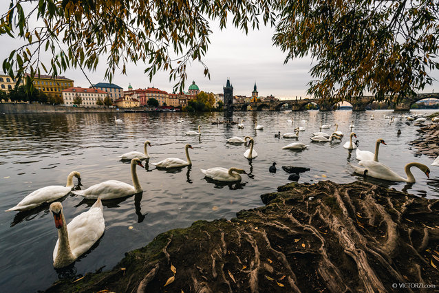 Victor Zi Prague Selected Photography Gallery