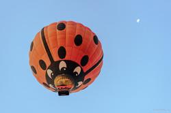 20201107 - Balloons in Gilboa - 071402
